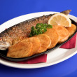 Fish — Stock Photo #1664258