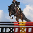 Royalty-Free Stock Photo: Show jumping