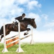 Show jumping — Stock Photo #1256821