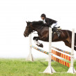 Horse and woman - showjumping — Stock Photo