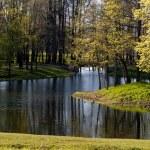 Lake in park — Stock Photo #1258909