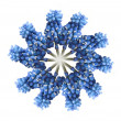 Wreath out of blue muscari - Foto Stock