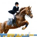 Equestrian jumper — Stock Photo #2654177