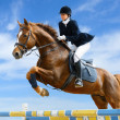 Equestrian jumper — Stock Photo #2654222