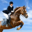 Paardensport jumper — Stockfoto