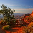 Stock Photo: Sunrise in Canyonlands