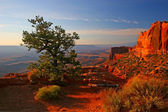 Sunrise in Canyonlands — Stock Photo