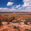 Red Desert — Stock Photo