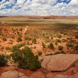 Desert panorama — Stock Photo #1306711