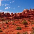 Stock Photo: Red Desert