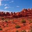 Red Desert — Stock Photo