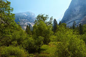 Yosemite Valley — Stock Photo