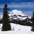 Stock Photo: Snowcapped Mount Rainier