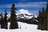 Snowcapped Mount Rainier — Stock Photo