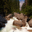Stock Photo: Stream in Yosemite Valley