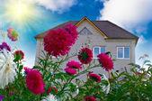 Large cottage — Stock Photo