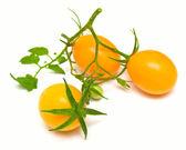 Perfect yellow tomatoes 3 — Stock Photo