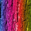 Painted wooden bark — Stock Photo