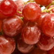 Juicy red grape background — Stock Photo #1415044