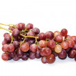 Juicy grape bunch isolated over white — Stock Photo