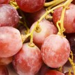 Stock Photo: Juicy grape background