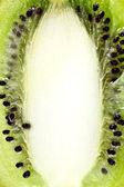 Kiwi cut background — Stock Photo
