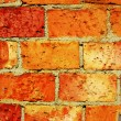 Brick wall — Stock Photo #1842874
