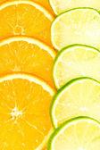 Citrus background — Stock Photo