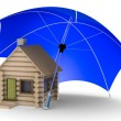 Insurance of habitation. Isolated 3D — Stock Photo