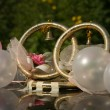 Gold wedding rings on roof of the car — Stock fotografie
