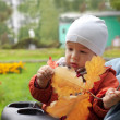 Baby and autumn leafs — Stock Photo #1186964