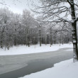 WInter landschap — Stockfoto