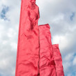 Brightly red flags - Stock Photo