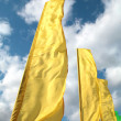 Brightly yellow flags — Stock Photo