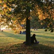 Persons Sitting under Tree - Stock Photo
