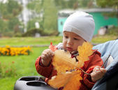 Baby and autumn leafs — Stock Photo