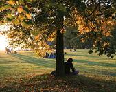 Ağacın altında oturuyor kişileri — Stok fotoğraf