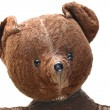 Seedy Teddy bear, Portrait - Stock Photo