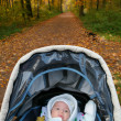 Baby on background of autumn park — Stok fotoğraf