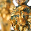 Golden Lion - Stock Photo
