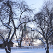 Solar Winter Day in Park Kolomenskoe — Stock Photo
