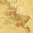 Texture to Old Wooden Surface - Stock Photo
