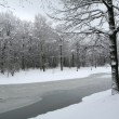 Winter landscape — Stock Photo #1405845
