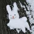 Snow hare — Stock Photo
