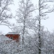Red house in winter wood — Stockfoto