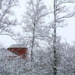 Rotes Haus im Wald winter — Stockfoto