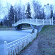 Winter morning landscape with bridge — Stock Photo