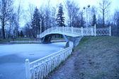 Winter morning landscape with bridge — Stock Photo