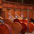 Stock Photo: Old bass viols