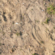 Texture, Sand with Imprint — Stock Photo
